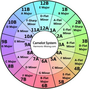 mixed in key review - camelot wheel