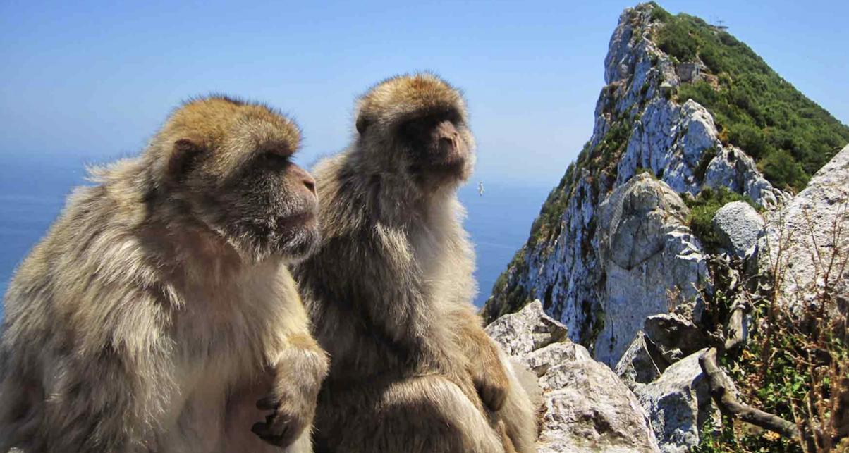 Digital DJ Tips Gibraltar
